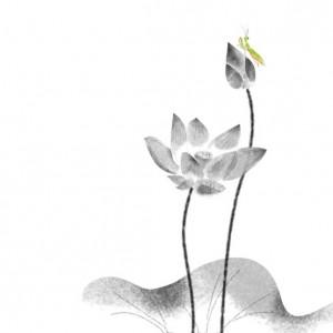 lotus -001